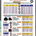 atli-zincir-kalibre-normal-zincir-fiyat-listesi-2011