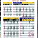 kirmizi-damarli-celik-halatlar-fiyat-listesi-2011
