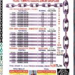yildiz-zincir-ege-saraciye-kaplan-zincir-fiyat-listesi-2011